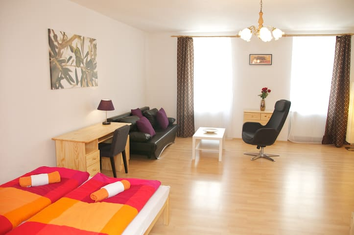 Old Town Spacious Apartment- Prague