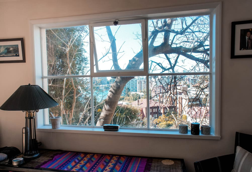 A living art picture window: from the lounge room beautiful filtered 'thru' the trees' views to Elizabeth & Rushcutters Bays.