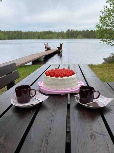 Villa Hyppykallio for 8 ,free wifi ,Saimaa area