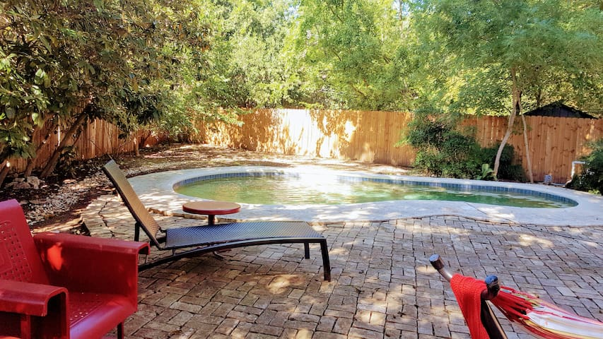 Saltwater pool and back yard