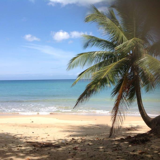 few seconds your beautiful beach