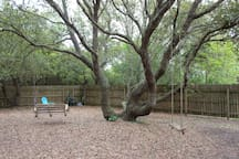 Peaceful backyard with oak trees and swings