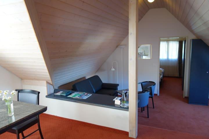 "Studio im Dach - Zentrale Lage ""Dachsuite"""