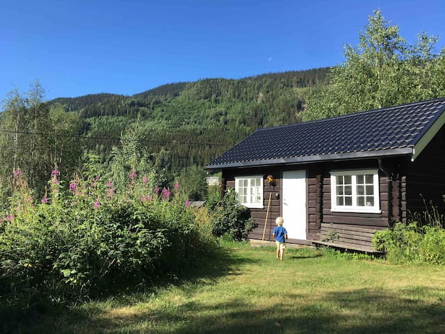 Our little cottage,30 minutes north of Lillehammer