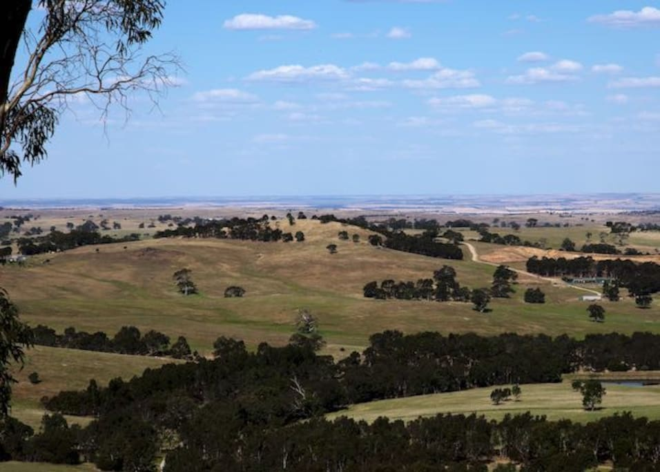 Views looking east down to the Murray Plains