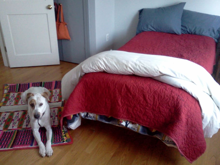 Bright room with single bed and sitting area (dog optional)