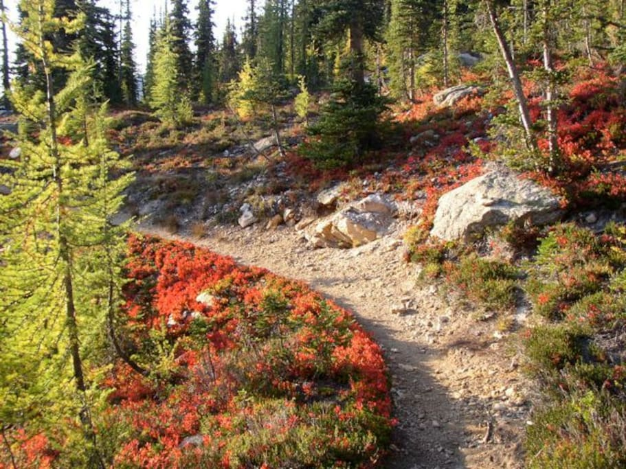 PCT (Pacific Crest Trail) Mexico to Canada