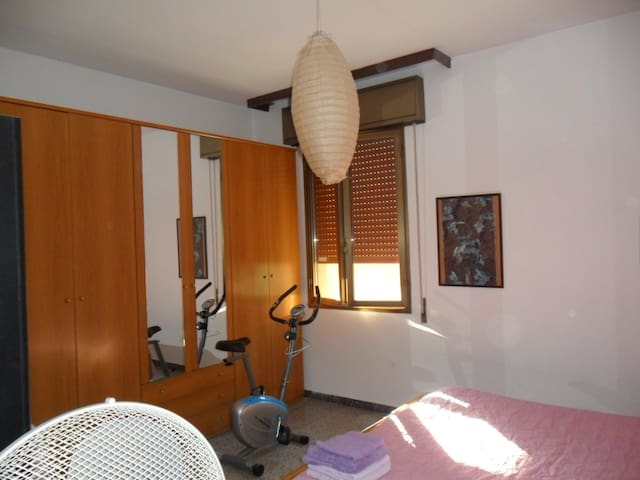 large room to let in Bologna