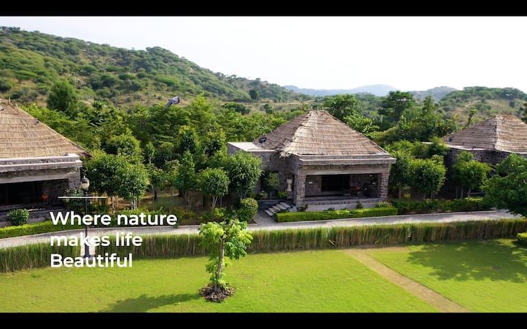 3 Room Jungle safari stay in Pali Rajasthan