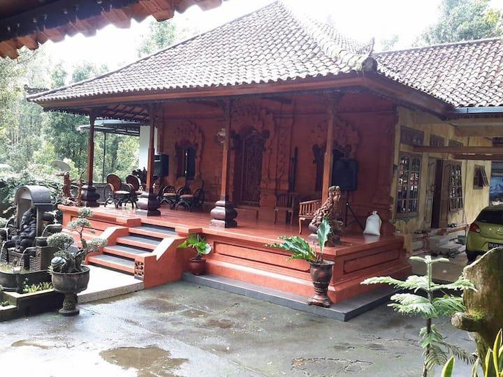 Wellcome to Rural House at Kayuputih Munduk Area