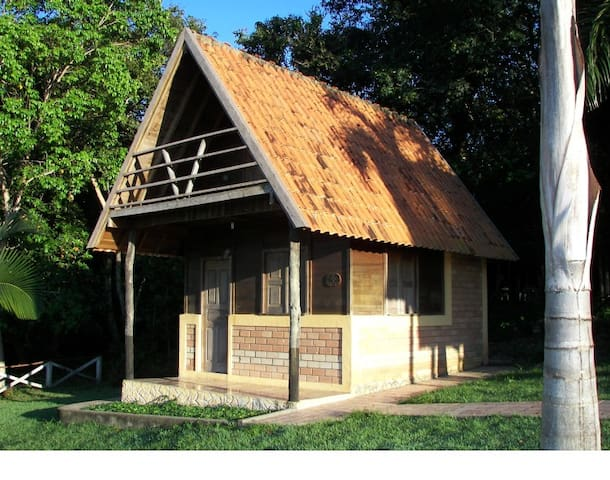 Chalets in the Amazon