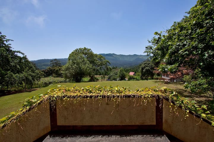 Quinta das Colmeias- The Main House
