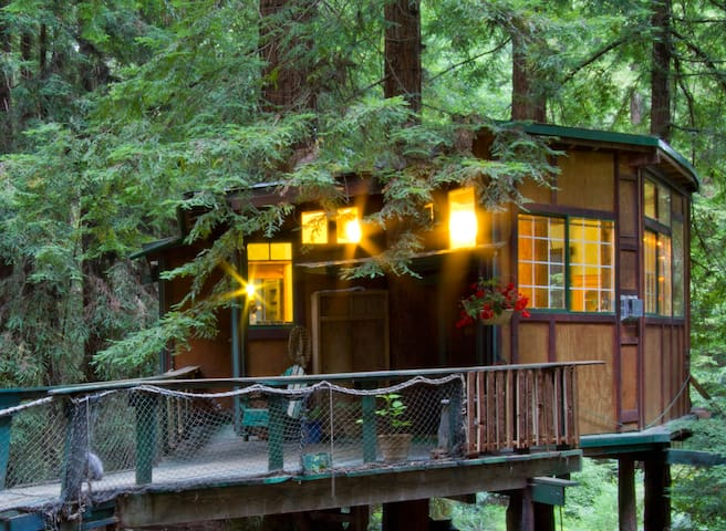 Redwood Treehouse Santa Cruz Mtns.