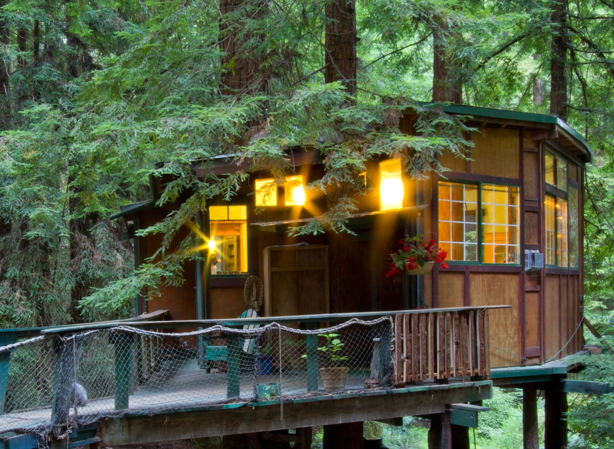 Attrayant Redwood Treehouse Santa Cruz Mtns.   Treehouses For Rent In Watsonville,  California, United States