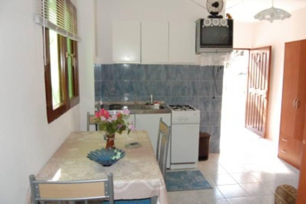 Apartmant no. 1 -kitchen