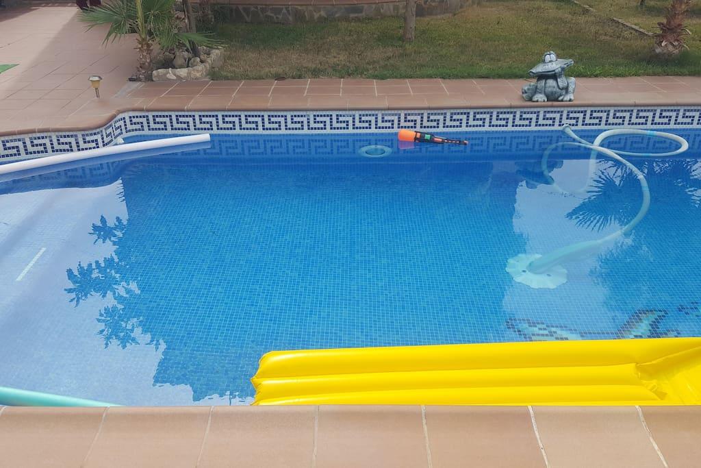 Vistas de la piscina y el jardín.