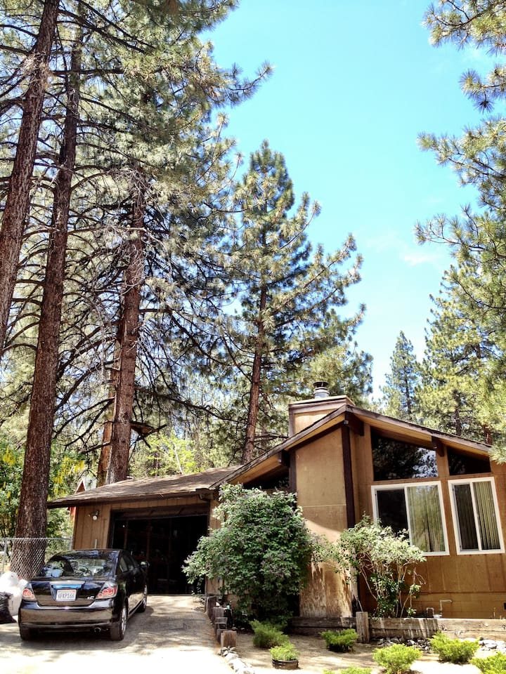 The house has a gated yard, garage & is nestled in pines!