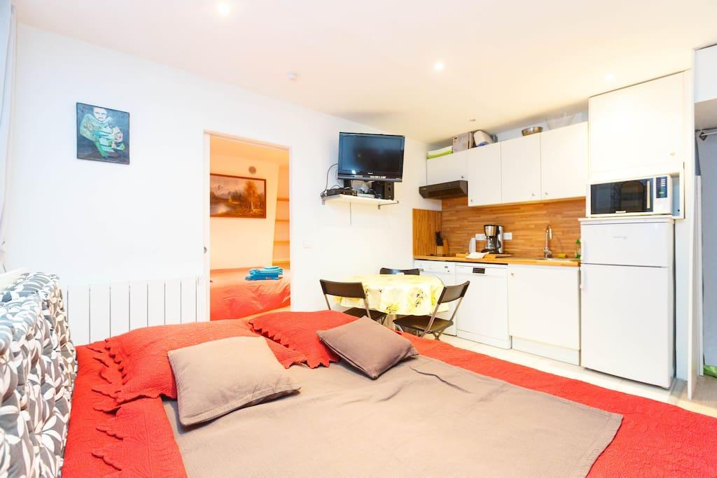 C'est un salon de 15 m² qui a 2 fenêtres double vitrage donnant sur cour . Cette pièce est équipée avec : une armoire, lit gigogne, la télévision, du parquet.