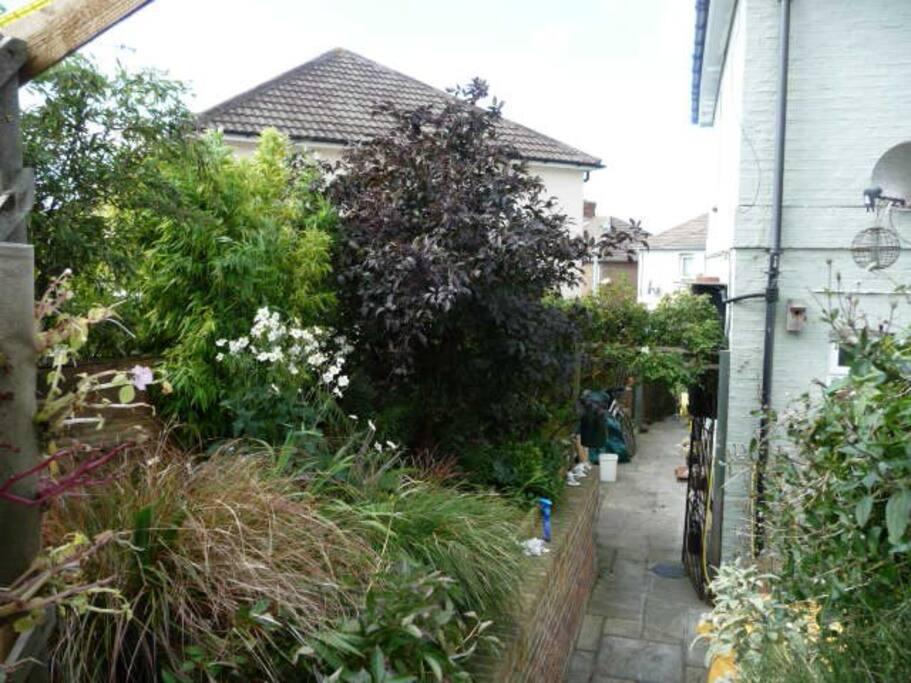 Side passage from top garden terrace in summertime