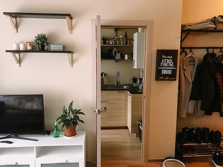 Уютные апартаменты в пригороде Москвы
