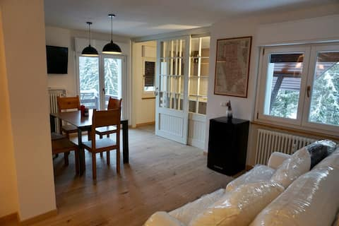 Boutique Apt with a view on Dolomites, ski in-out!