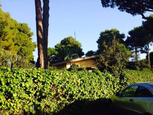 Casa 70 mq  pineta di Punta Ala 10 minuti dal mare