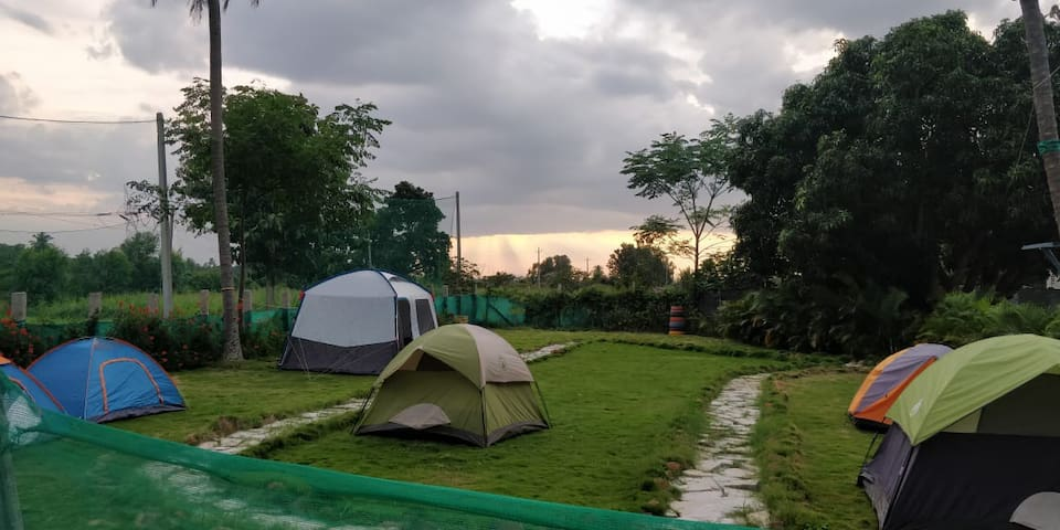 Campstay amidst the nature with beautiful hillview