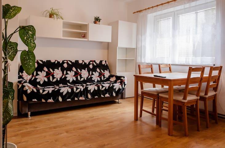 Apartmán v Sedlici