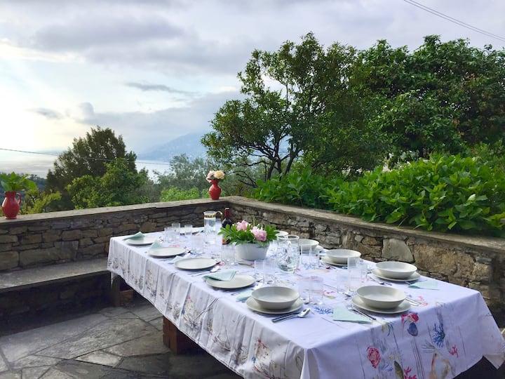 Villa dei Limoni - Private garden with seaview