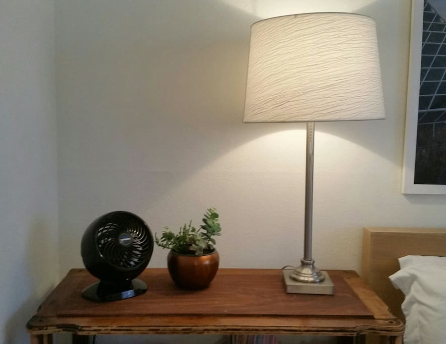 Bedside vintage chest with light, fan and succulents.