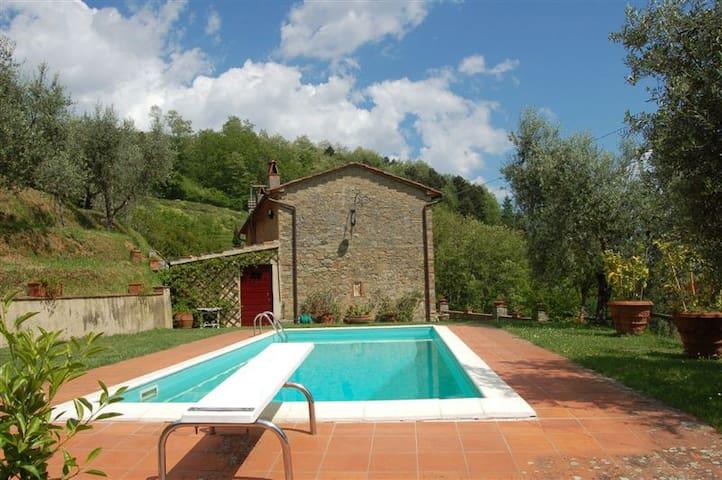 Fantastic Villa Miravalle - Petrognano - Villa