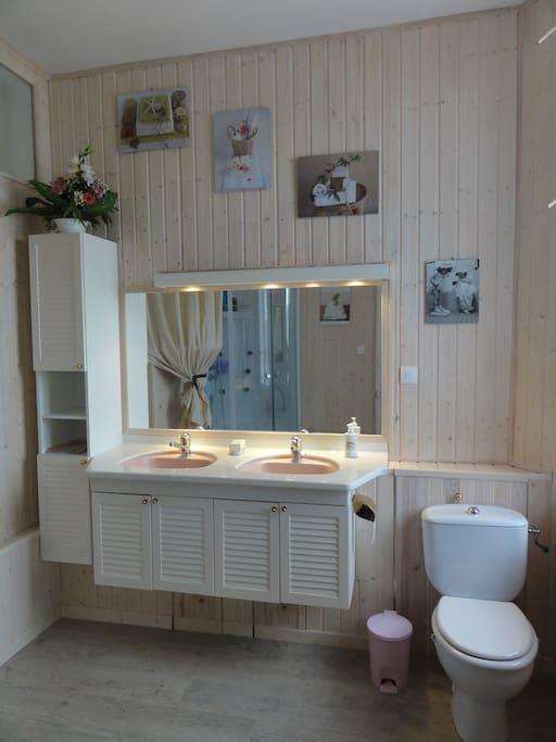 Salle de bains, la douche ce voit dans le miroir