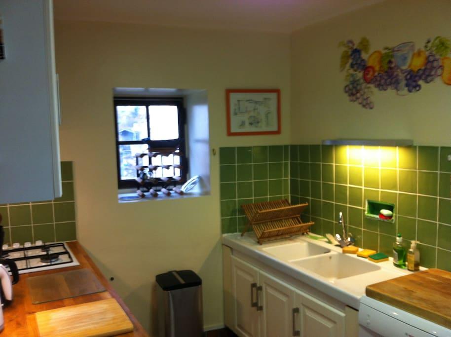 Original kitchen wall mural makes cooking gay!