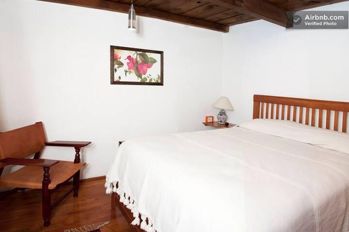 Lovely comfortable room facing garden, Coyoacán