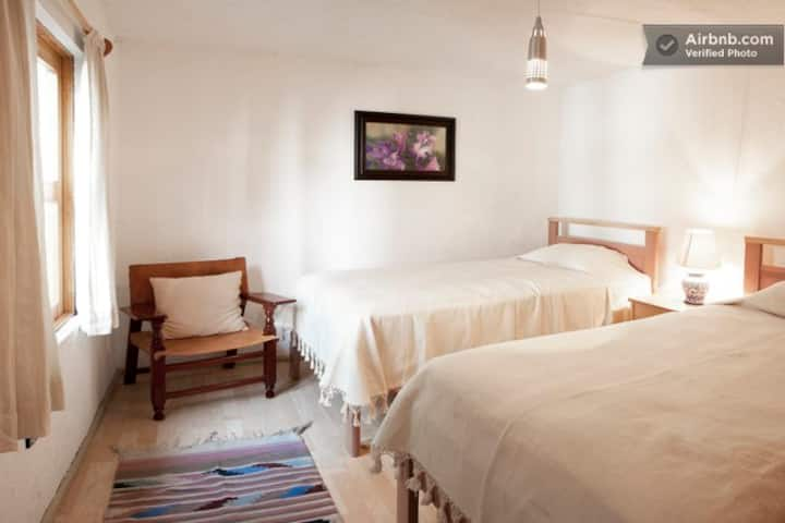 Delightful room facing garden oasis, Jacaranda