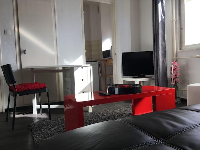 F1  Tout confort Haguenau centre - Haguenau - Apartemen