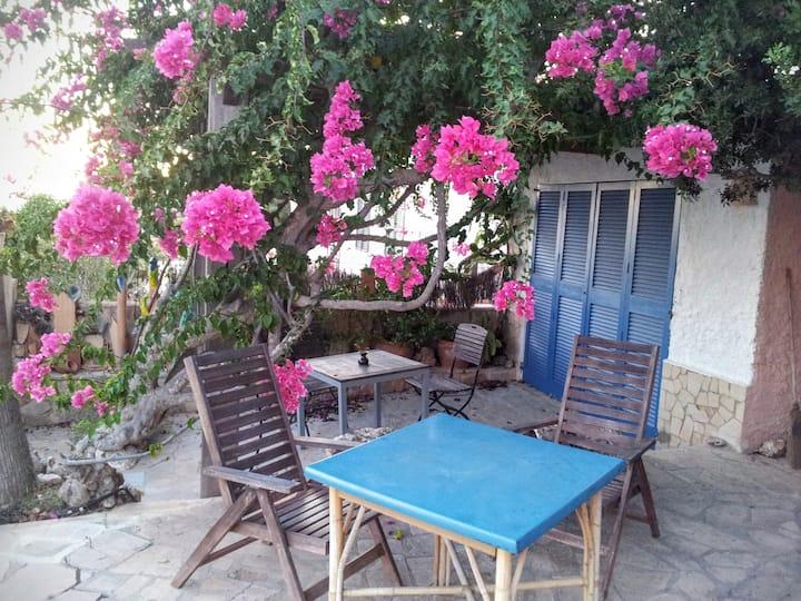 Romantic studio with fantastic sea views