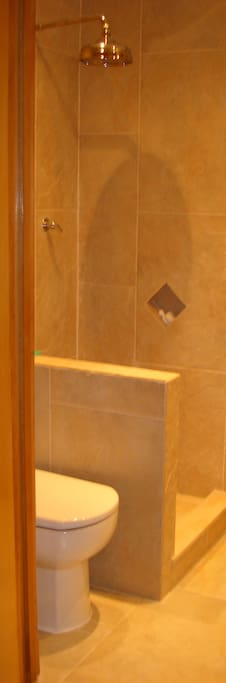natural stone shower-room