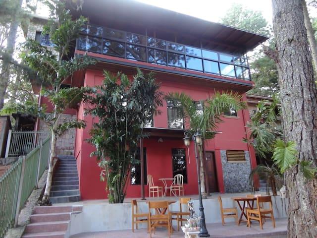 Villa Pine Forest - Santa Lucia - Santa Lucia - Bed & Breakfast