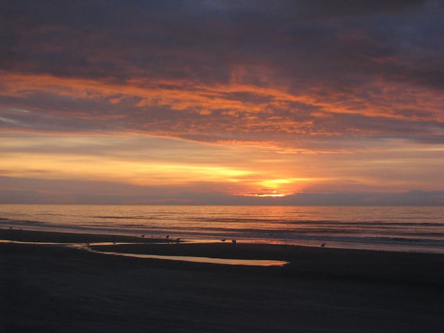 Lovely Oceanfront N. Myrtle 2 Bdrm/2 bath Condo!! - North Myrtle Beach - Appartement