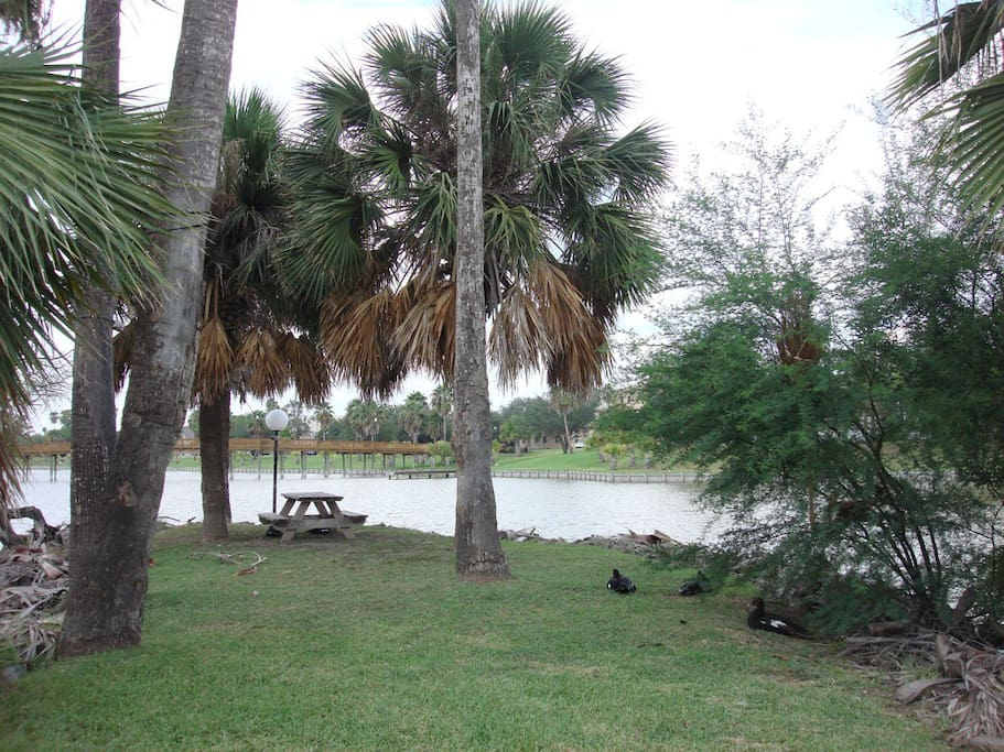 Grab a book and some lunch - relax at the resaca island picnic table