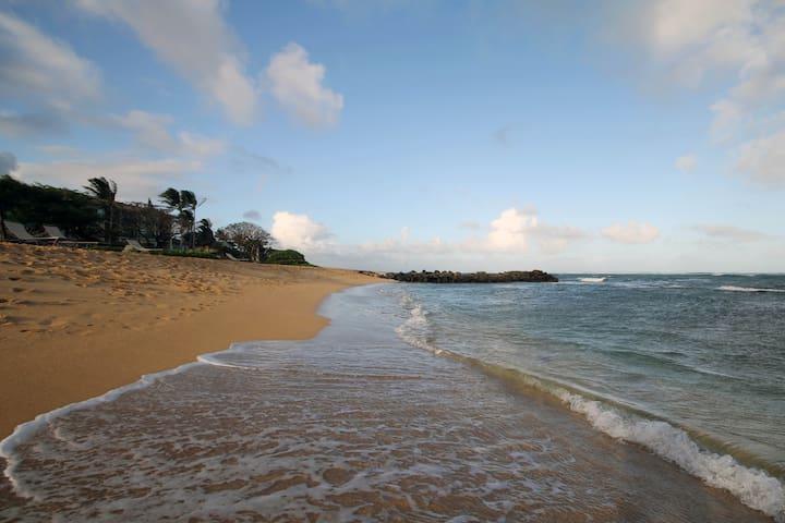 Beautiful Waipouli Beach Resort G307 condo