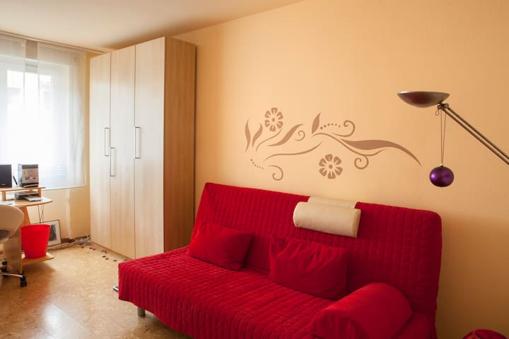 Close to downtown; room (16qm) - Friburgo - Casa