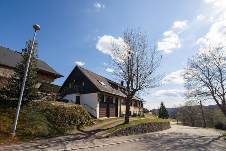 Cosy apartment with private terrace in Todtnauberg in the Upper Black Forest