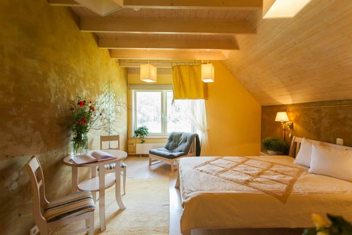 Cosy Seaside Hotel - Double Room