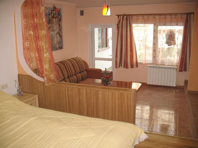Квартира-студия в частном доме. - Truskavets - Apartment