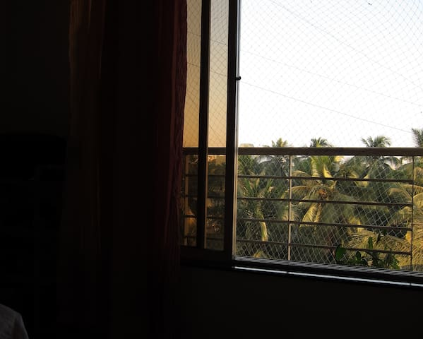 View from the window.