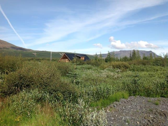 Nest cottage - Gullfoss and Geysir.