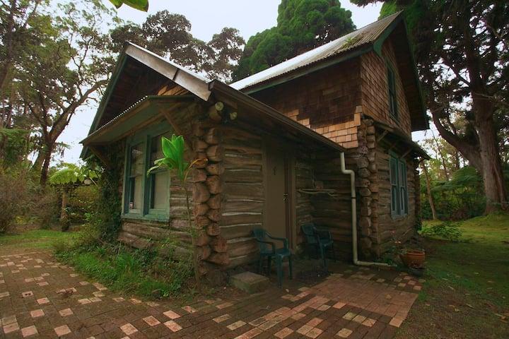 Log Cabin Volcano  TAT#TA-014-054-8096-01