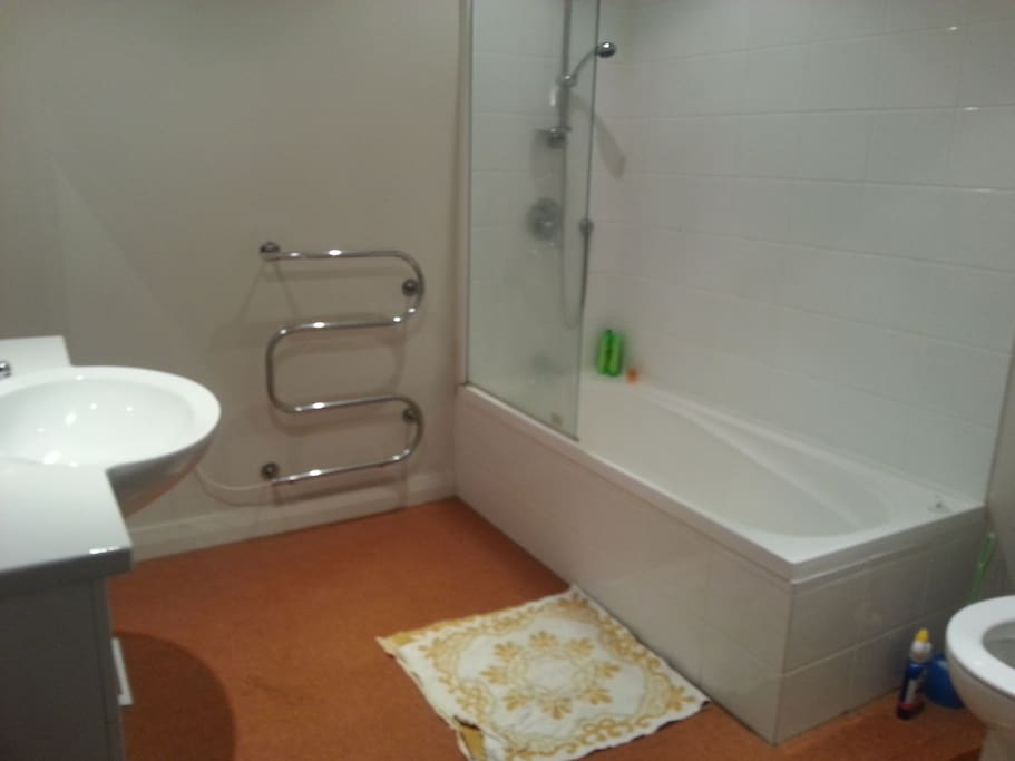 Large shared bathroom (no one else sharing currently)